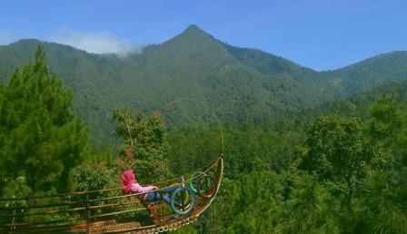 Objek wisataTaman Bedengan - tempat wisata di Magetan
