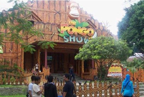 The Pongo Show mekarsari