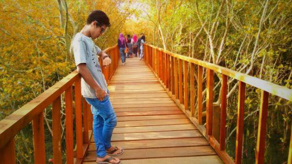 Hutan Mangrove Ujungpangkah via @young_guns15
