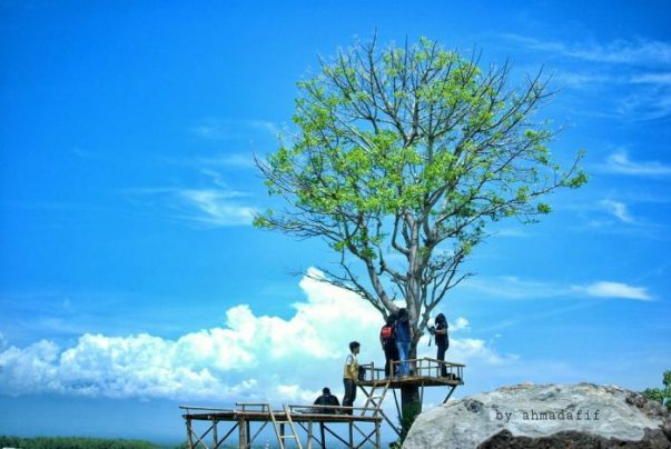 Taman Wisata Gunung Kendil via @ahmadafif