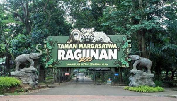 Liburan Seru ke Kebun Binatang Ragunan via wisatajakartablog