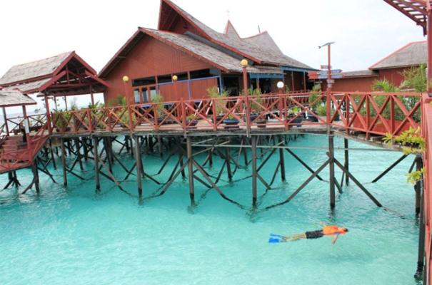 Penginapan di Pulau Derawan via Kaltimprov
