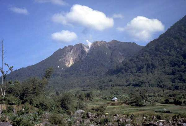 Trekking ke Gunung Sibayak via wikipedia