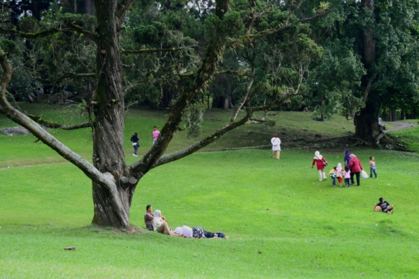 Bersantai Ria di Kebun Raya Cibodas via wirasetiawan29