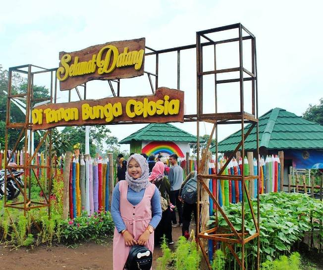 Gerbang Taman Bunga Celosia via visiter