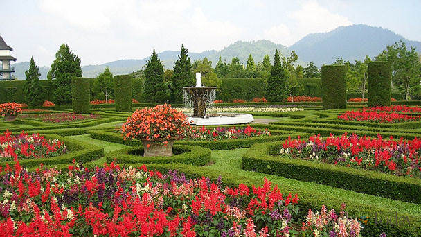 Kecantikan Taman Bunga Wiladatika Cibubur