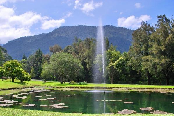 Kolam Besar Kebun Raya Cibodas via Wisatawanalam
