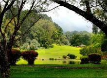 Taman Cibodas