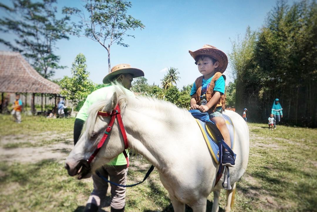 Agrowisata Bhumi Merapi via @dyaharumrevita