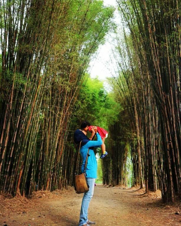 Objek Wisata Hutan Bambu Keputih