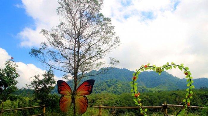 Objek Wisata Kali Kuning via Tribunnews