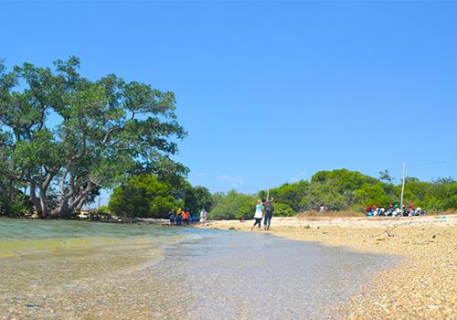 Pantai Brondong via dnusantara