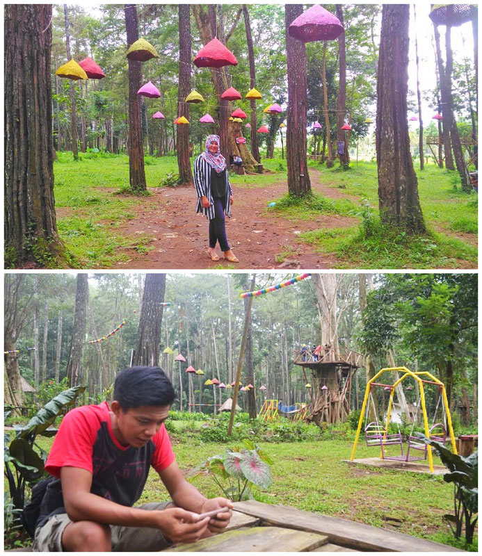 Tasnan Forest via @widyawati_widwin & @to_nyin