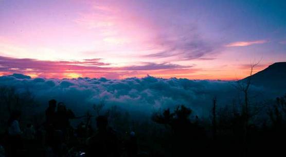 Wisata Pegunungan Hyang Bondowoso