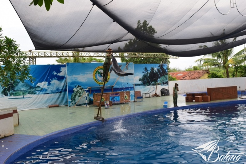Batang Dolphin Center via Okezone