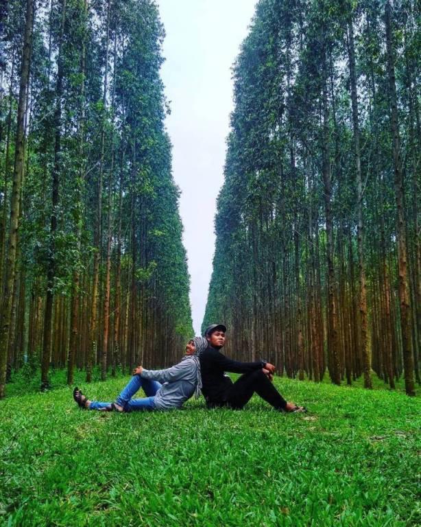 Hutan Kayu Putih Kragilan via @anugrahpuspitasari22