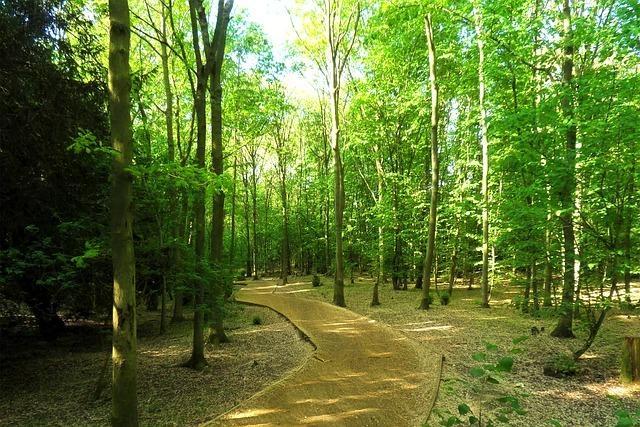 Hutan Wisata Kucur via Sportourim