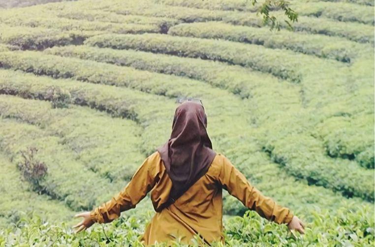 Kebun Teh Pagilaran Batang via @dhen_ajung