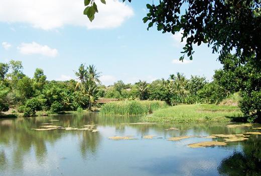 Obyek Wisata Waduk Curah Cottok Situbondo via Tagar