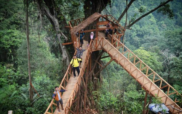 Rumah Pohon Tombo via Malaspulang