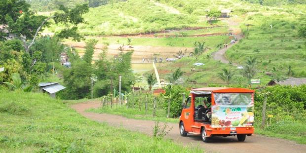 Agrowisata Ngebruk Patean via Tempatwisatadaerah
