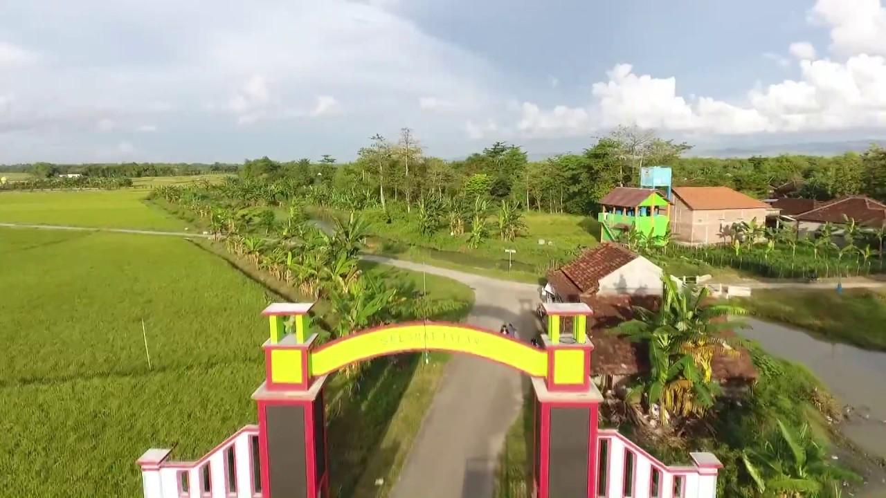Desa Wisata Pemancingan Talun via Youtube