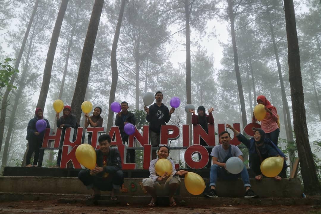 Hutan Pinus Kalilo Kaligesing via @hutanpinuskalilo
