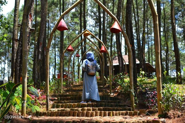 Hutan Pinus Sikepel via Coretandjawani