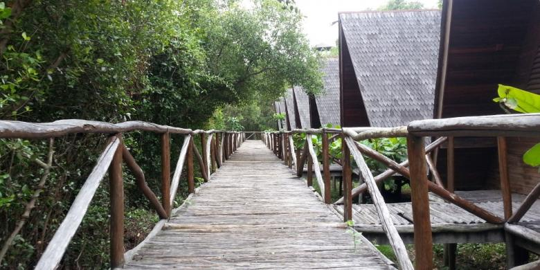 Mangrove Angke Kapuk via Kompas