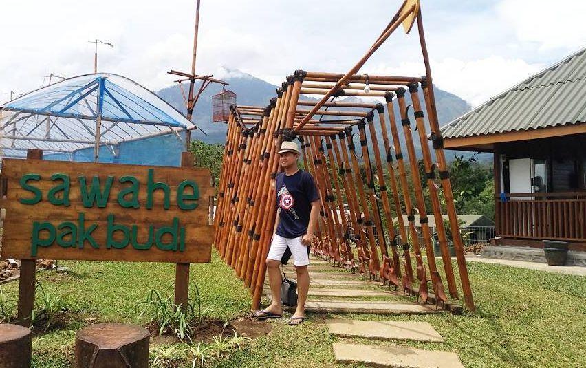 Sawahe Pak Budi via @wisata.kebunpakbudi