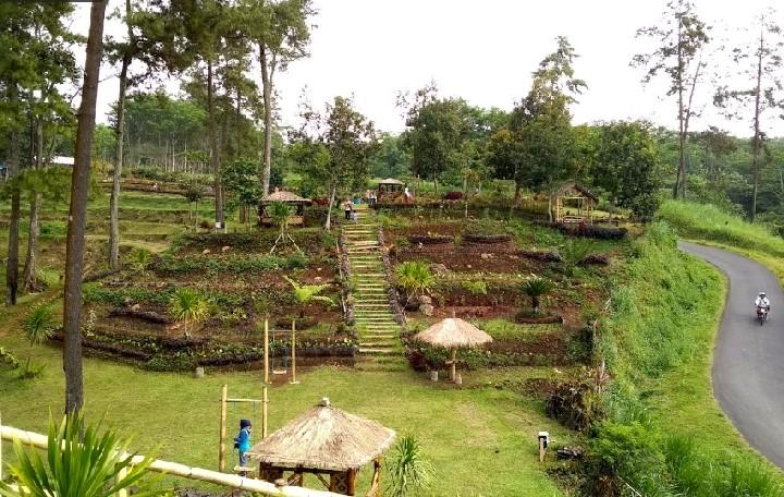 Taman Lawang via Kanalmalang