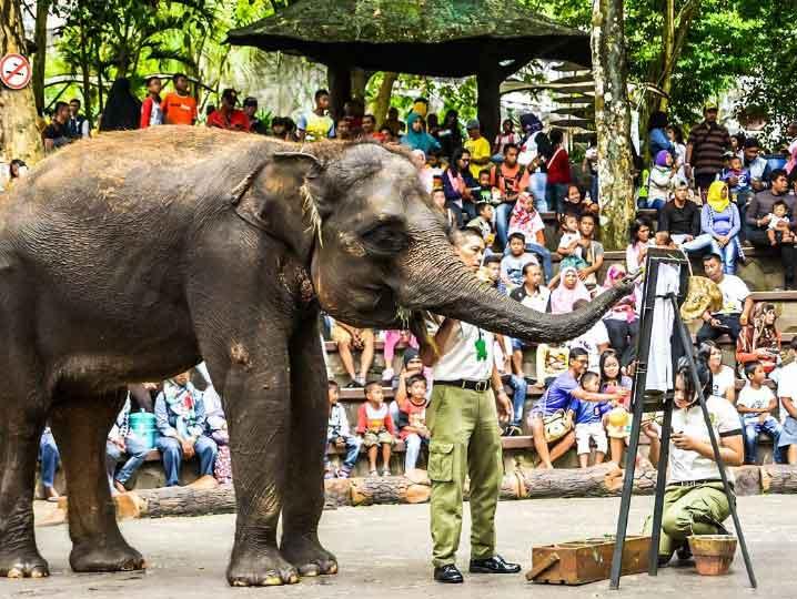 Taman Safari Prigen via @farisalbaihaqi