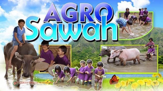 Agro Sawah