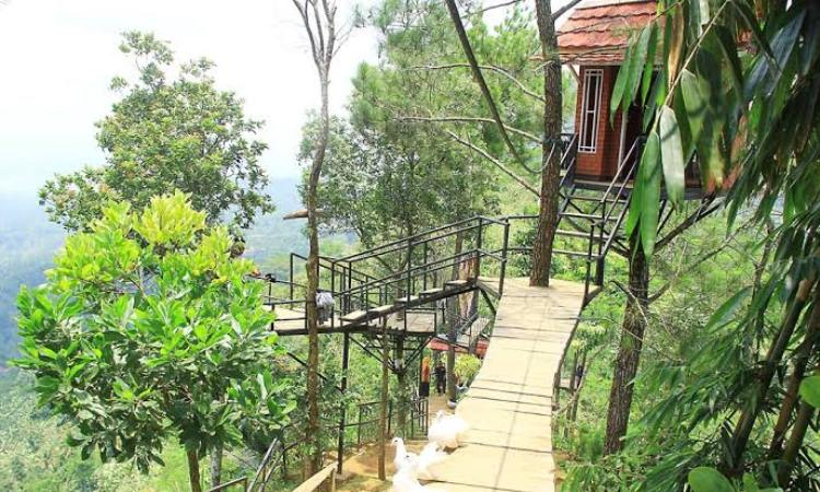 Bukit Asmara Situk via Mgriyahotel