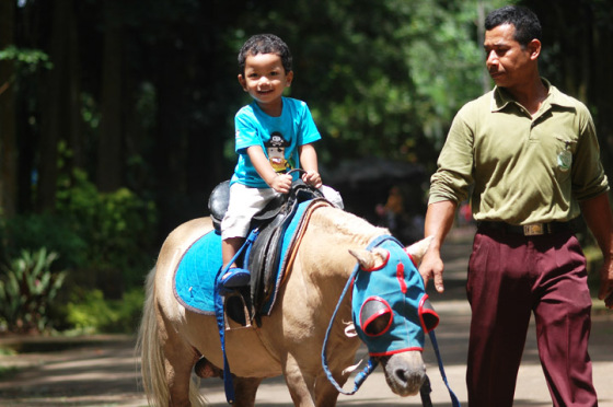 Kuda Tunggang via nyonyaerlangga.wordpress.com