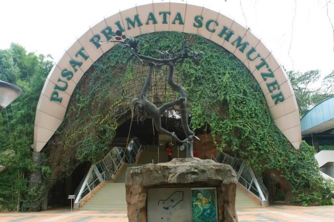 Ragunan Primata Schmutzer via Indonesiakayacom
