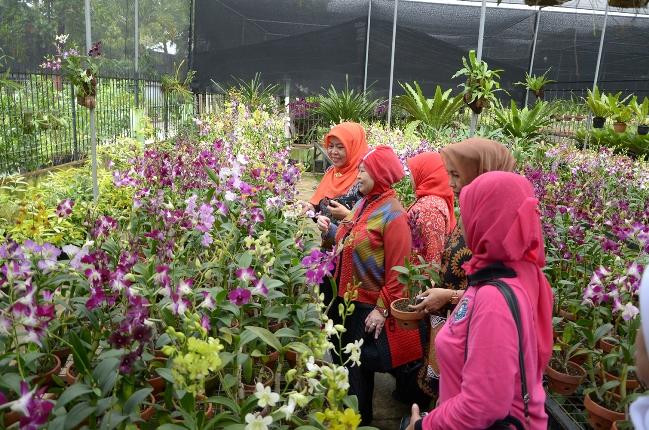 Taman Anggrek Ragunan via Santiorchid.wordpresscom