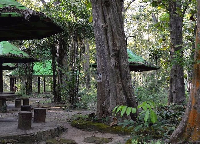 Monumen Hutan Jati Alam Blora via Inet