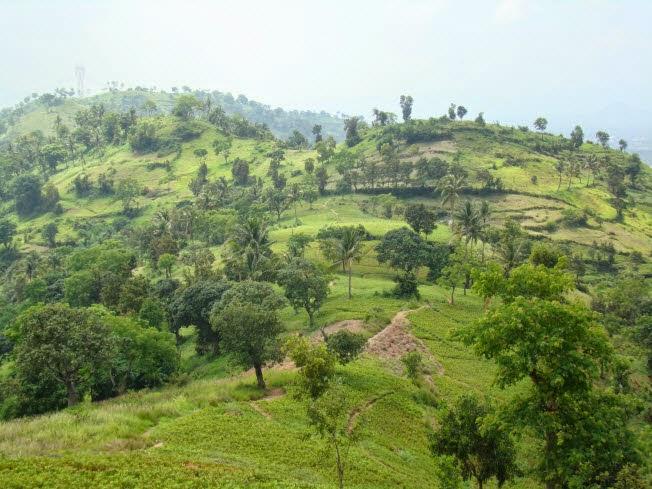 Gunung Batur via NaturaleksplorerIndonesia