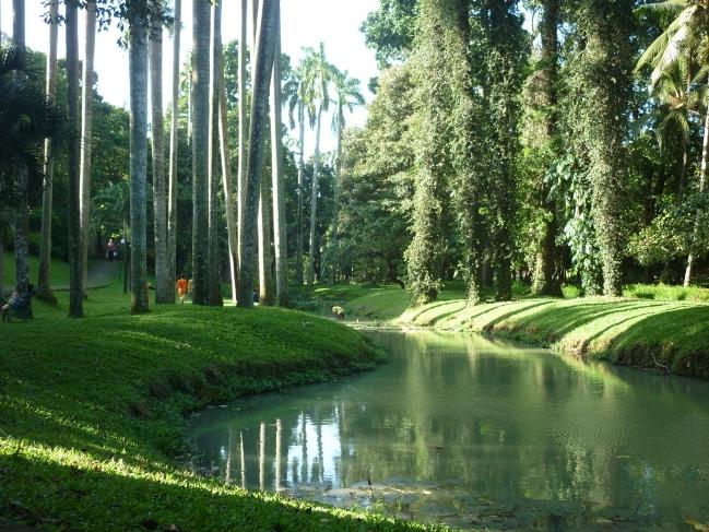 Sungai di Taman Langsat via Kakipasir