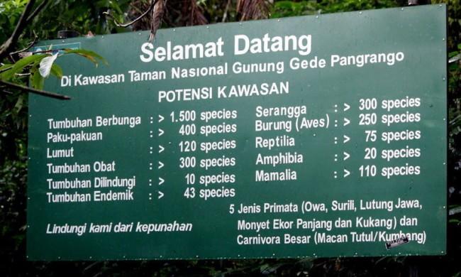 Koleksi Taman Nasional Foto: Wisata Halimun