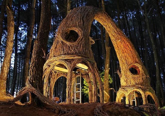 Hutan Pinus Pengger via Wisatayogya