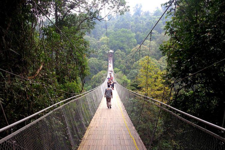 Jembatan Gantung Situgunung di Taman Nasional Gunung Gede Pangrango