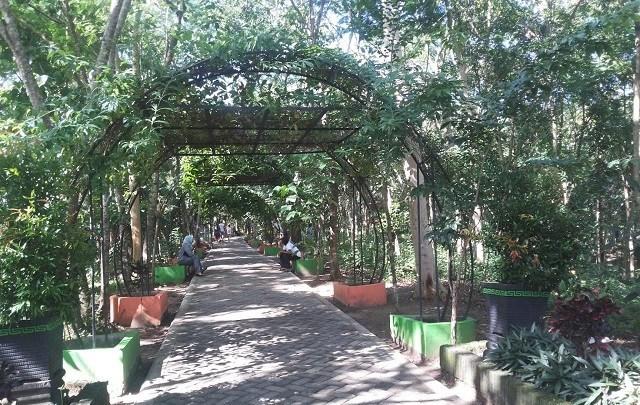 Hutan Kota Trenggalek via Duta