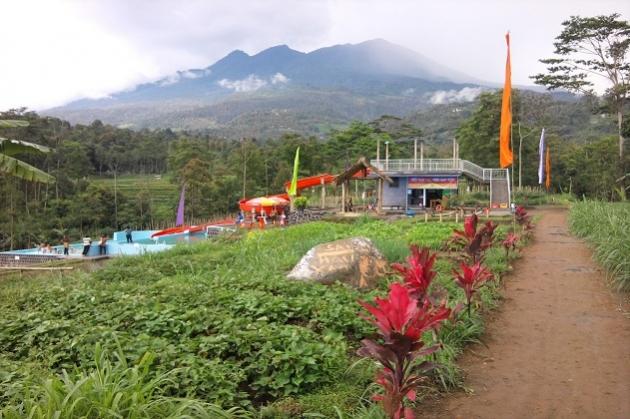 Agrowisata Amanah via Jitunews