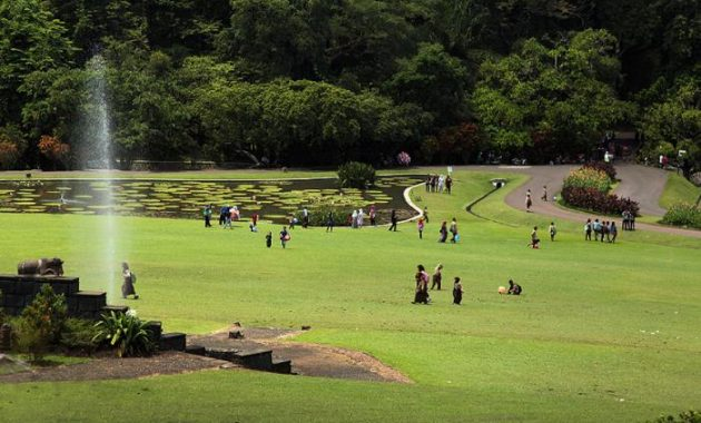 Area Taman Kebun Raya Bogor via Jakartavenue