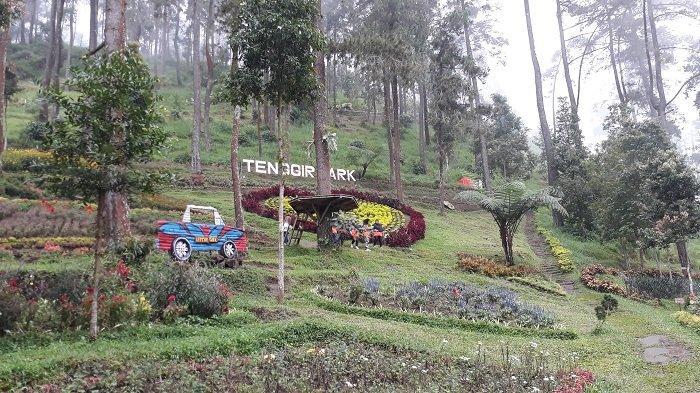 Tenggir Park via Tribunnews