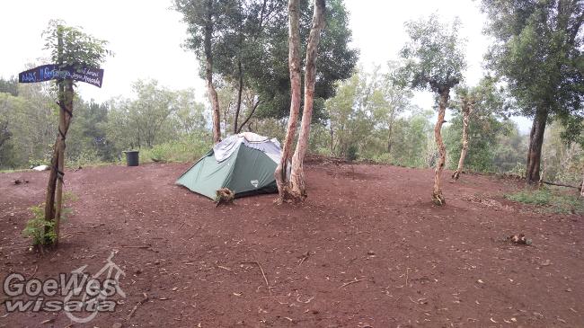 Camping Hutan Pinus Mangunan via gysanjaya.wordpresscom
