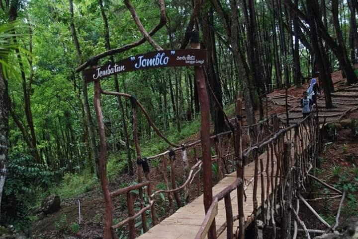 Jembatan Jomblo Songgolangit
