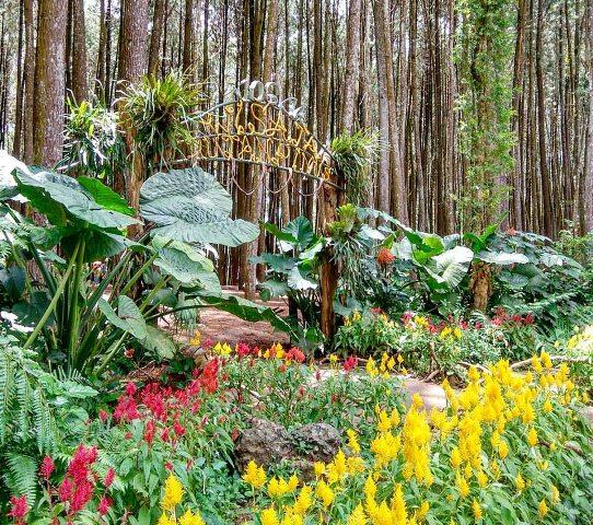Taman Bunga di Depan Pintu Masuk via Foursquare.jpg